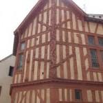maison-arbre-jesse